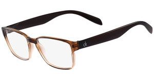 Calvin Klein CK5876 210 SHINY CHOCOLATE BROWN