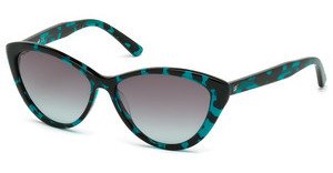 Web Eyewear WE0164 55B