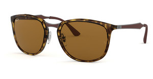 Ray-Ban RB4299 710/83 POLAR BROWNLIGHT HAVANA