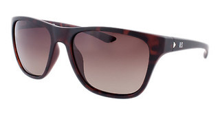 HIS Eyewear HP77100 2