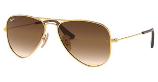 Ray-Ban Junior RJ9506S 223/13 BROWN GRADIENTGOLD